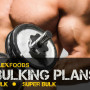 Bulk-Plans